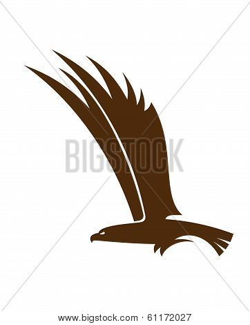 Flying falcon or hawk