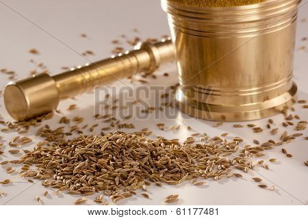 Jeera or Cumin Seeds
