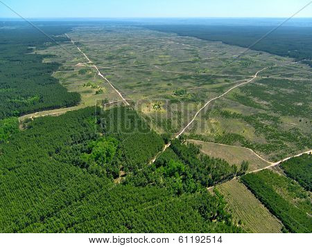 Deforestation. (Aerial view).