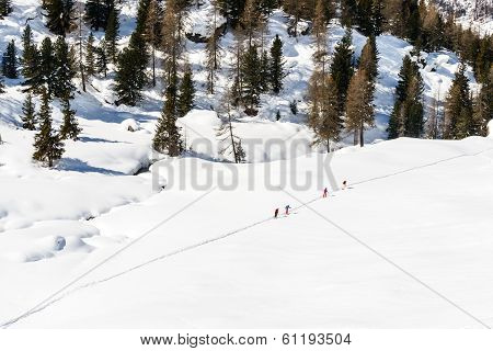 Skiers on A Path, Cuneaz, Ayas Valley (italy)