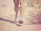 a woman running on a trail with a dog done with a retro vintage instagram filter