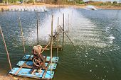 image of aerator  - Aerator  in the shrimp farm for fresh water in Thailand - JPG
