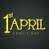 foto of fools  - Happy Fool - JPG