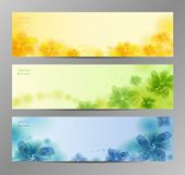 pic of colorful banner  - Abstract Flower Vector Background  - JPG