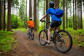stock photo of country girl  - Girl and boy biking on forest trails - JPG