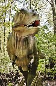 picture of tyrannosaurus  - Tyrannosaurus rex dinosaur looking real life walking in forest.