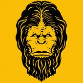 picture of bigfoot  - Bigfoot Yeti Head Illustration - JPG