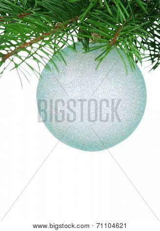 Bauble on green christmas firtree on white background