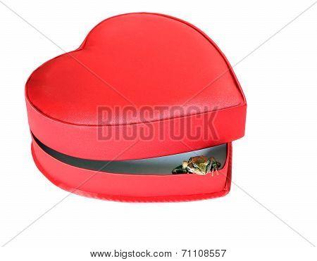 Little Frog In A Open Festive Heart Shaped Box