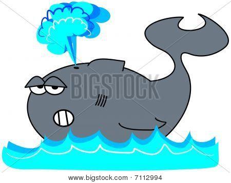 Whale Spouting Mist
