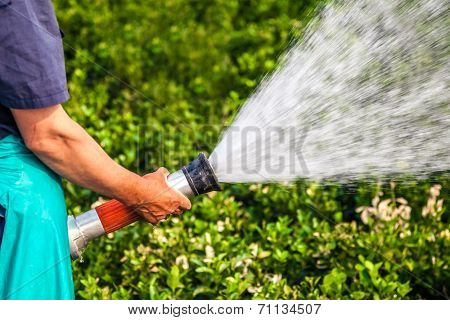 men hand watering the plants