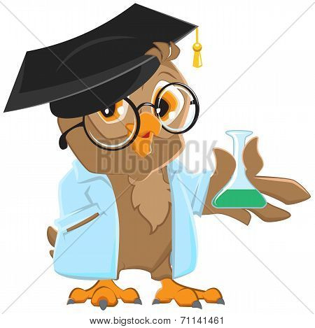 Owl teacher in a blue robe holding a flask