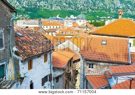 The Tiny Roofs