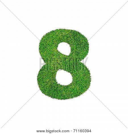 A Grass Eight 8 Isolated On A White Background