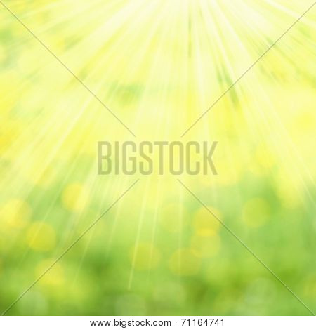 Abstract Spring And Summer Background. Spring Grass In Sun Light And Defocused Sky On Background