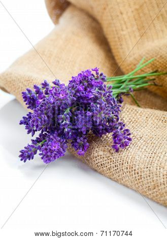 Lavender Flowers On The Burlap, Over White Background
