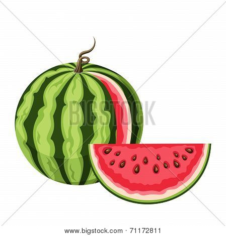 Watermelon with a slice. Vector illustration.