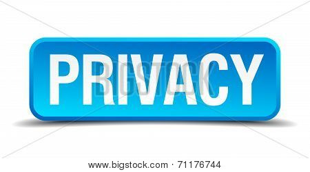 Privacy Blue 3D Realistic Square Isolated Button