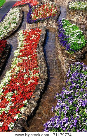 Colourful flowerbeds.