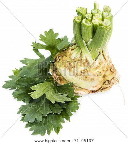Isolated Celeriac