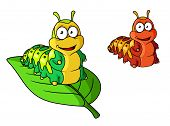 picture of caterpillar cartoon  - Cartoon cute caterpillar character isolated on white - JPG