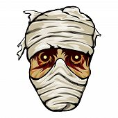 pic of embalming  - Ghoulish face of a mummy wrapped in bandages with staring eyes for horror and Halloween  vector illustration on white - JPG