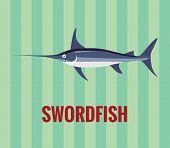 image of swordfish  - Vector resizable drawing of a swordfish - JPG