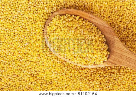 millet on a wooden spoon