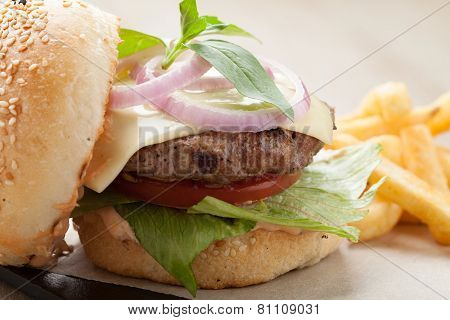 Wheat Beef Sandwich Hamburger, Fried Potatoes, Ketchup Served For Launch