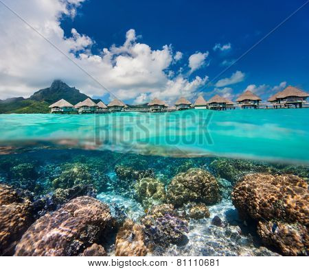 Beautiful coral garden under over the water bungalows in French Polynesia