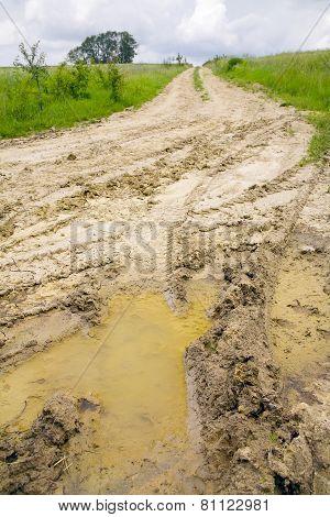 Field Dirt Road