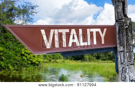 Vitality wooden sign with a forest background