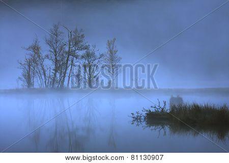 bog in winter, Vosges mountains, France