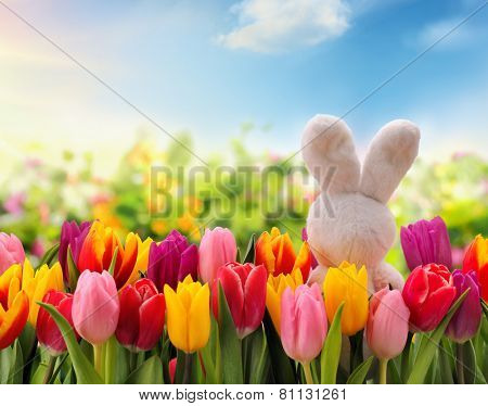 Easter decoration with rabbit and tulip flower.