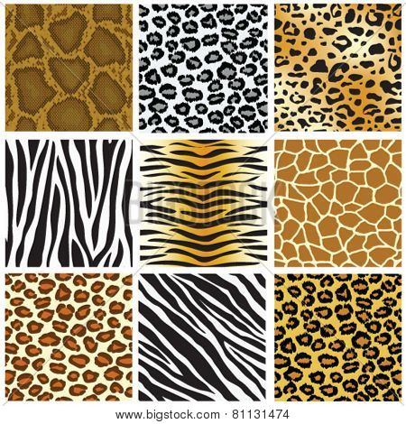 animal skin seamless pattern set, vector illustration
