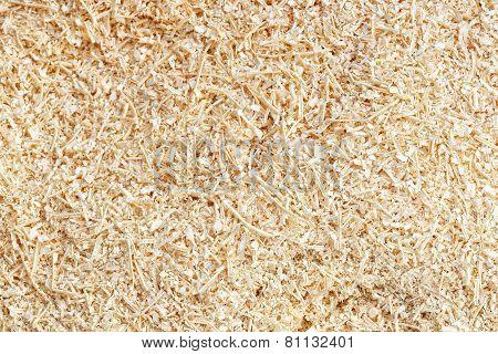 sawdust background wood wallpaper detail texture dust