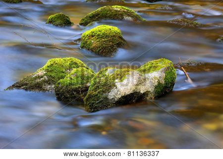 mountain brook with mossy stones