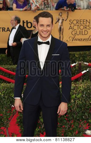 LOS ANGELES - JAN 25:  Jesse Lee Soffer at the 2015 Screen Actor Guild Awards at the Shrine Auditorium on January 25, 2015 in Los Angeles, CA