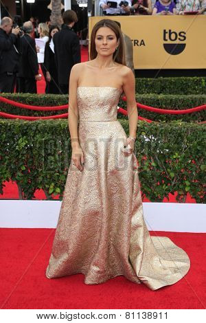 LOS ANGELES - JAN 25:  Maria Menounos at the 2015 Screen Actor Guild Awards at the Shrine Auditorium on January 25, 2015 in Los Angeles, CA