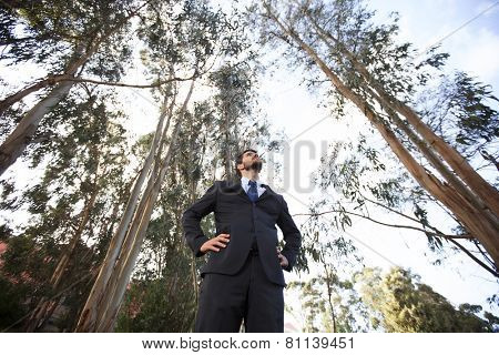 Power businessman at the forest, bellow view