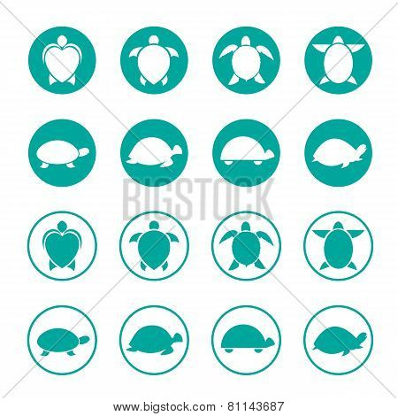 Vector Group Of Turtle In The Circle On White Background