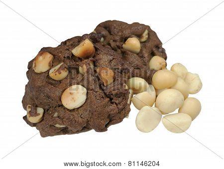 Macadamia Cookies Isolated