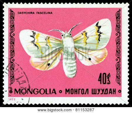 Vintage  Postage Stamp. Butterfly Dasychira Fascelina.