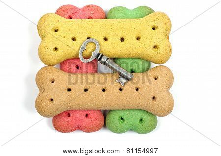 stack of dog biscuits and key