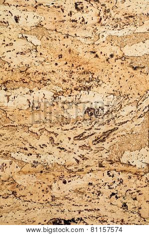 Cork Texture. Background. Closeup