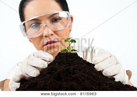 Botanische Wissenschaftler im Labor