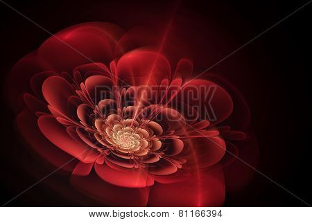 Abstract Fractal Texture In Shape Of Blooming Flower. Visualization  Of Complex Equations.