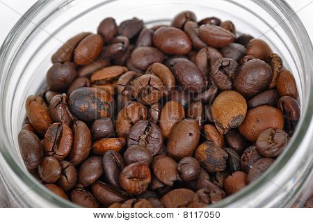 Coffee Bean Inside Glass Jar