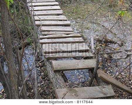 Broken wood bridge