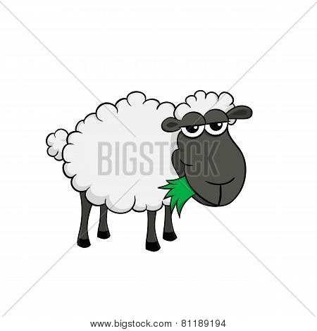 Isolated illustration of a cartoon sheep eating grass